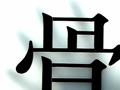 骨とデザイン - 山中俊治ディレクション 「骨」展