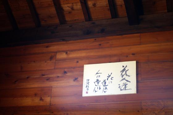 らふたぶ散策 沖縄篇 - 花人逢 14