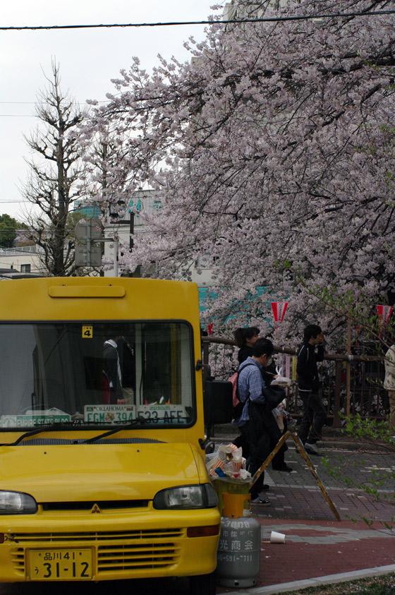 目黒川沿いの桜 2011 その2 2