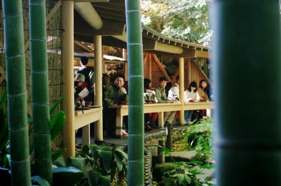 らふたぶ散策 鎌倉篇 - 報国寺 竹の庭 9