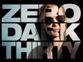 ゼロ・ダーク・サーティ / ZERO DARK THIRTY