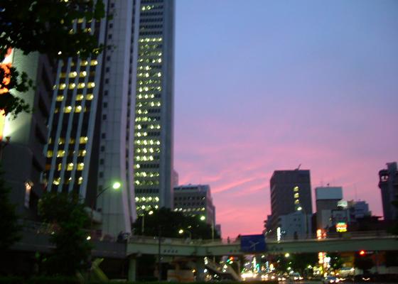 photo_006.jpg